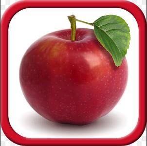 game anak belajar mengenal buah-buahan di hp android