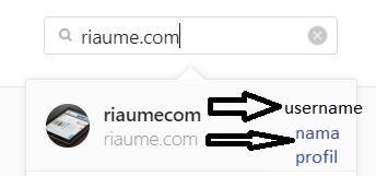perbedaan username dan nama profil pada instagram
